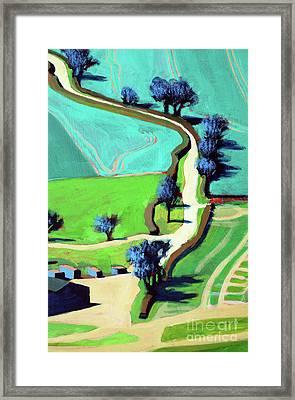 Country Lane Summer Framed Print