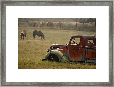 Framed Print featuring the photograph Country Life.. by Al Swasey