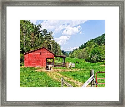 Country Life Framed Print by Susan Leggett