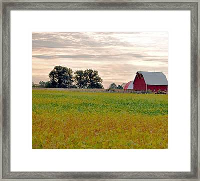 Country Living Framed Print by Brittany H