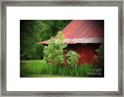 Country Living Framed Print by Karry Degruise