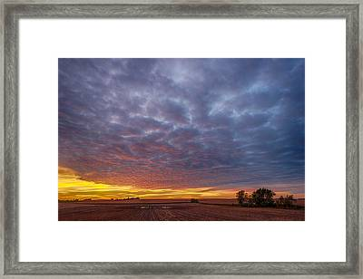 Framed Print featuring the photograph Country Living by Sebastian Musial