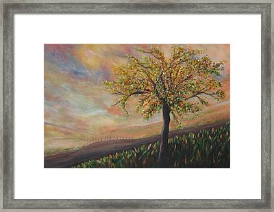 Country Morn Framed Print