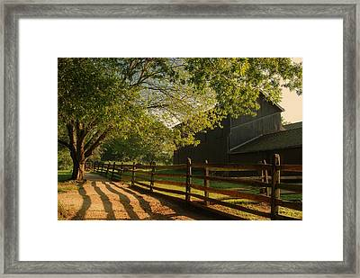 Country Morning - Holmdel Park Framed Print by Angie Tirado