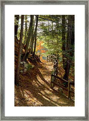 Framed Print featuring the photograph Country Path by Arthur Dodd