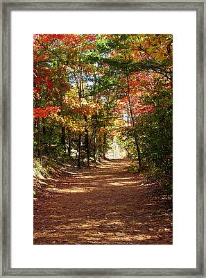 Country Path Framed Print by Ralph  Perdomo