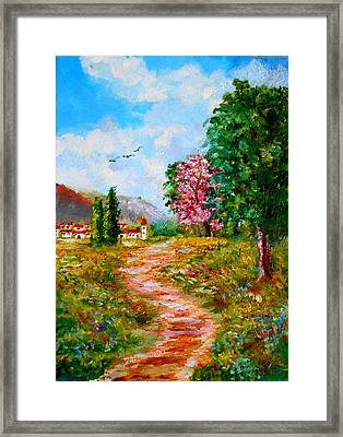 Country Pathway In Greece Framed Print