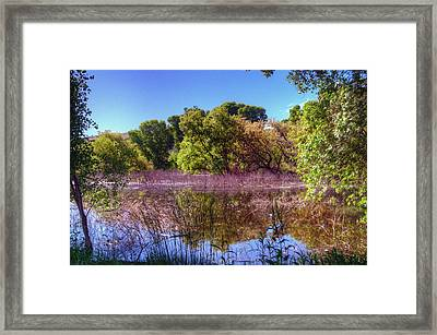 Country Peace Framed Print by Thomas  Todd