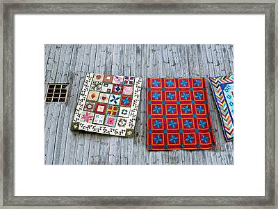 Patches Framed Print by Diana Angstadt