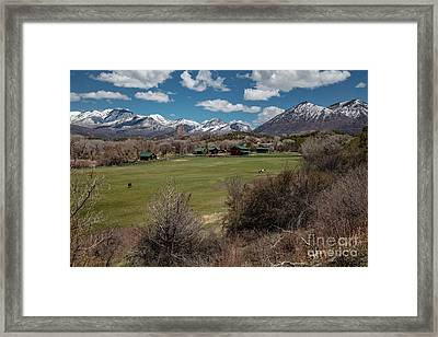 Country Ranches  Framed Print
