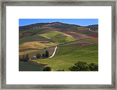 Country Road And Fields Framed Print by Panoramic Images
