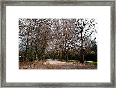 Country Road Framed Print by Arik Baltinester