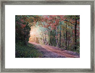 Country Road Framed Print by Bill Stephens