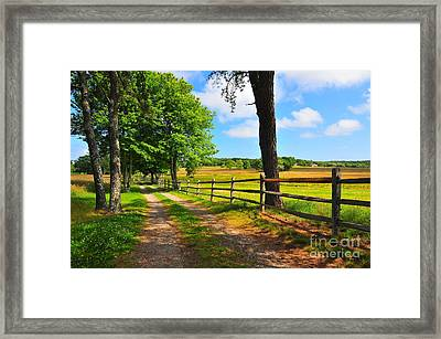 Country Road Framed Print by Catherine Reusch Daley