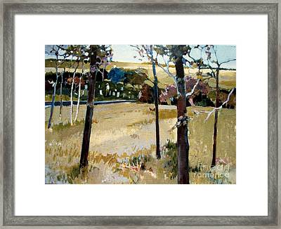 Country Road Framed Print by Diane Ursin