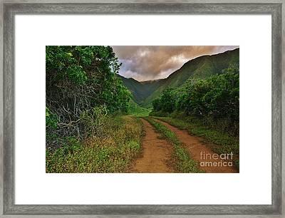 Country Road Kalaupapa, Molokai Framed Print