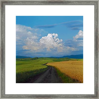Country Road Framed Print by Pavel  Filatov
