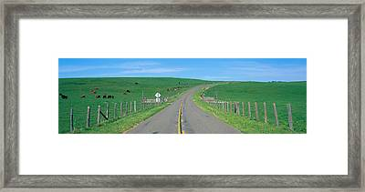Country Road Separating Pastures Framed Print