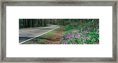 Country Road Through Great Smokey Framed Print by Panoramic Images