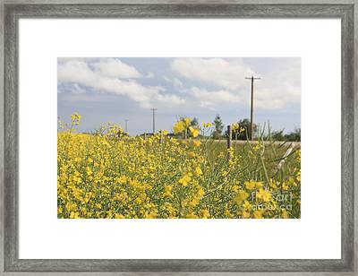 Framed Print featuring the photograph Country Road by Wilko Van de Kamp