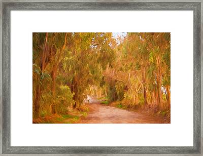 Country Roads 1 Framed Print by Michelle Wrighton