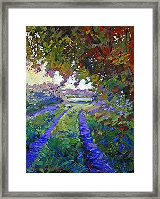 Country Roads Provence Framed Print by David Lloyd Glover