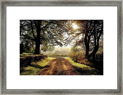 Country Roads Framed Print by Ronda Ryan