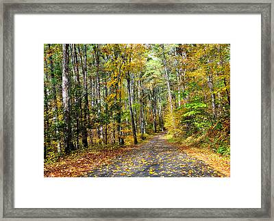 Country Roads Framed Print by Todd Hostetter