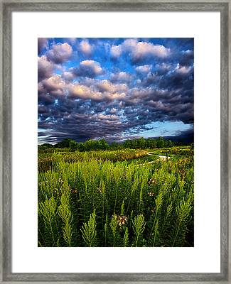 Country Strolling Framed Print