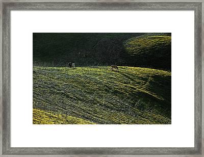 Country Sunset Framed Print by Viktor Savchenko