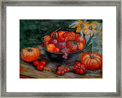 Country Tomatos Framed Print by Barbara Oberholtzer