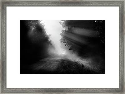 Framed Print featuring the photograph Country Trails by Dan Jurak