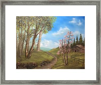 Country Valley  Framed Print