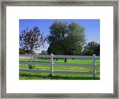 Framed Print featuring the photograph Country Yard by Tammy Sutherland