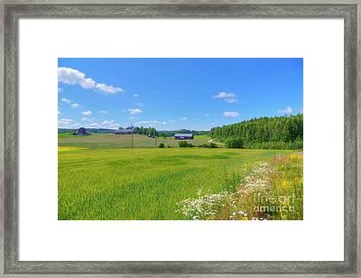 Countryside IIi Framed Print