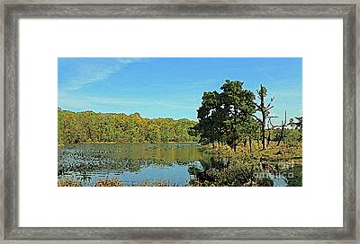 Countryside Netherlands, Lakes, Meadows, Trees, Digital Art. Framed Print