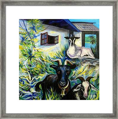 Countryside Of Jamaica Framed Print