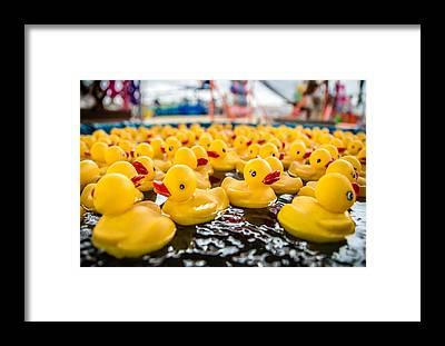 Rubber Ducky Framed Prints