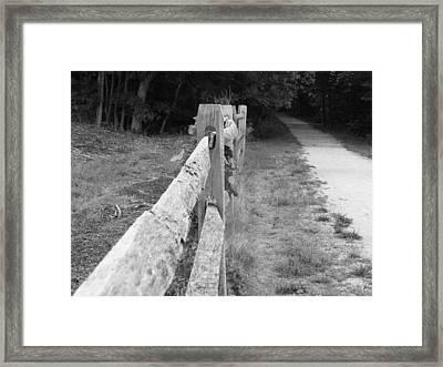 County Fence  Framed Print by D R TeesT