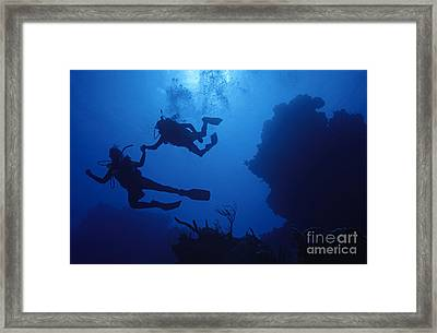Couple Of Divers Holding Hands Framed Print by Sami Sarkis