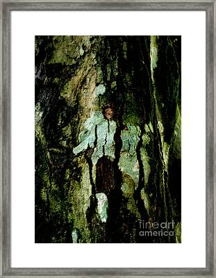 Couple On A Tree Framed Print