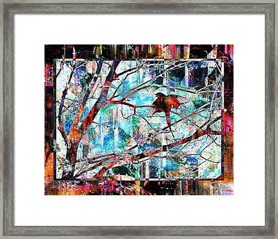 Courting Bird Framed Print