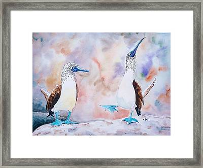 Courtship Dance Framed Print by Maria Gronlund