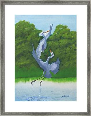 Courtship Dance Framed Print