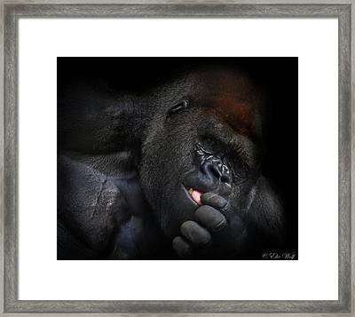 Cousin No. 24 Framed Print