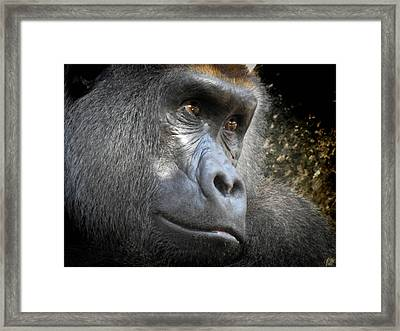 Cousin, No. 44 Framed Print