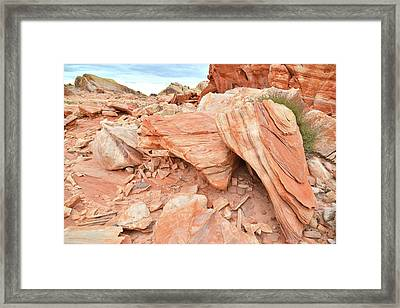 Framed Print featuring the photograph Cove Of Sandstone Shapes In Valley Of Fire by Ray Mathis