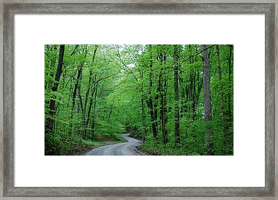 Covered Bridge Road Framed Print by Beverly Cazzell