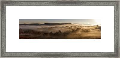Covered In Fog Framed Print