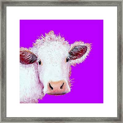 Cow Art - Charolais On Purple Framed Print